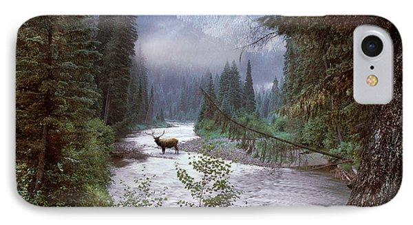 Elk Crossing 2 IPhone Case