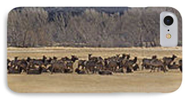 IPhone Case featuring the photograph Elk Herd And Horses Panorama 18x161 by J L Woody Wooden