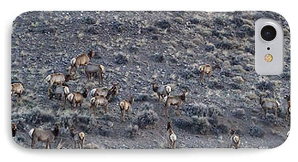 IPhone Case featuring the photograph Elk Herd On A Hillside Panoramic - 12x54.5 by J L Woody Wooden