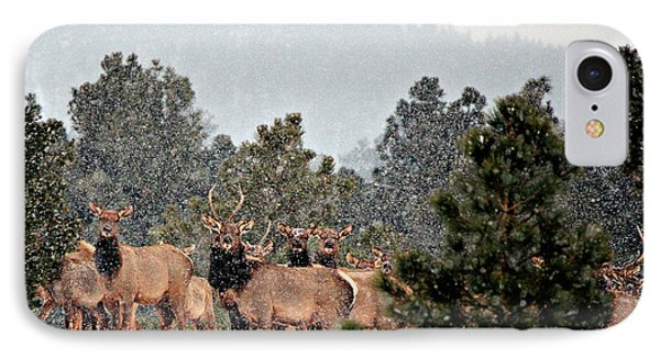 IPhone Case featuring the photograph Elk In The Snowing Open by Barbara Chichester