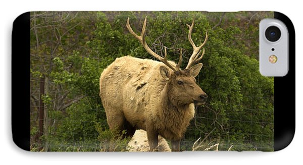 Elk Symbol Of IPhone Case