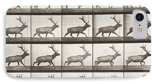 Elk Trotting  IPhone Case