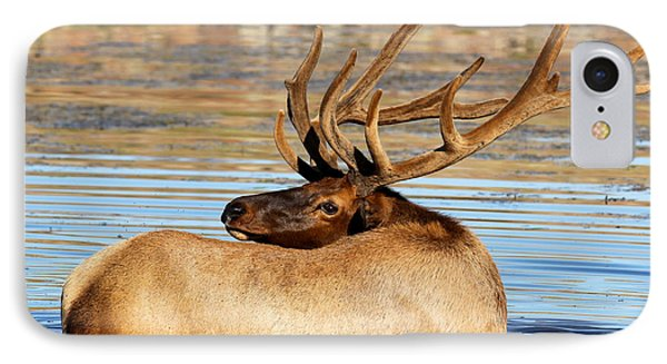 Elk Velveteen  IPhone Case