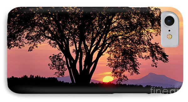 IPhone Case featuring the photograph Elm At Sunset by Alan L Graham