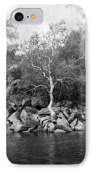 IPhone Case featuring the photograph Elm Tree Kern River by Hugh Smith