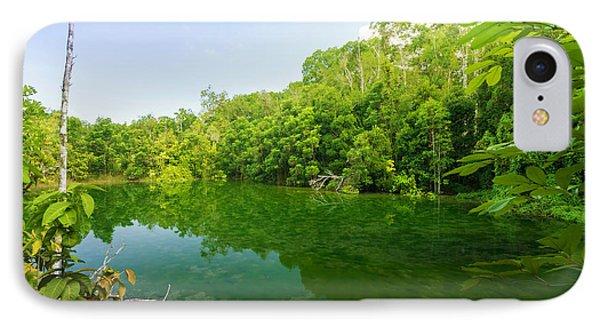 Emerald Pool Phone Case by Atiketta Sangasaeng