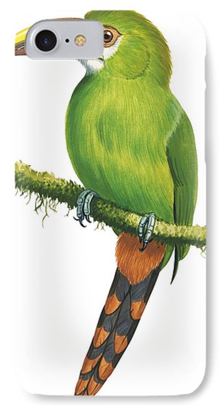 Emerald Toucanet IPhone Case by Anonymous