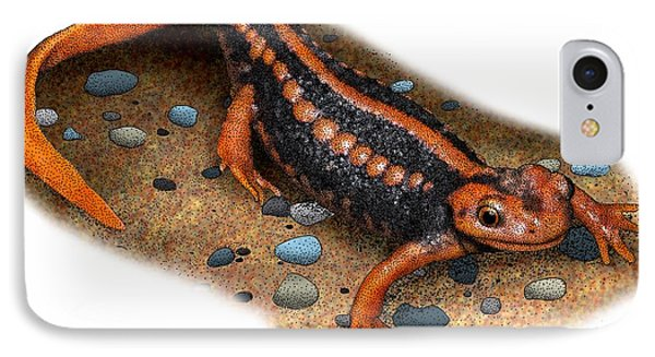 Emperor Newt IPhone Case by Roger Hall