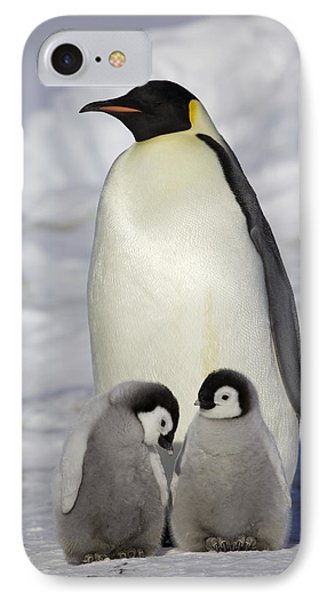 Emperor Penguin And Two Chicks IPhone Case by Frederique Olivier
