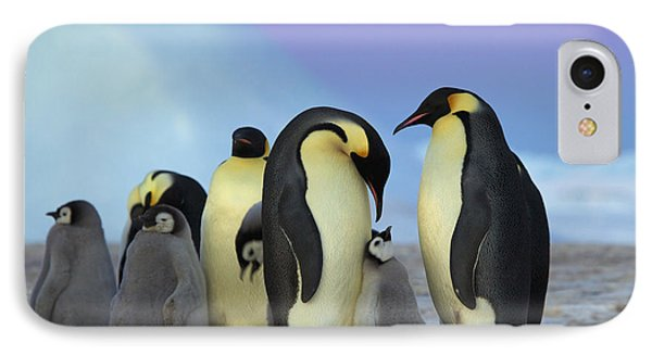 Emperor Penguin Parents And Chick IPhone 7 Case by Frederique Olivier