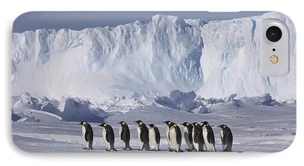 Emperor Penguins Walking Antarctica IPhone Case
