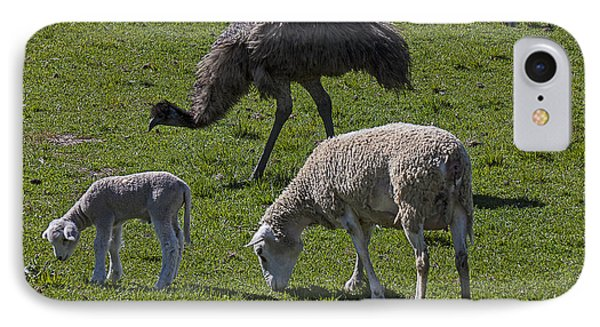 Emu iPhone 7 Case - Emu And Sheep by Garry Gay
