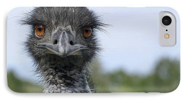 IPhone Case featuring the photograph Emu Gaze by Belinda Greb