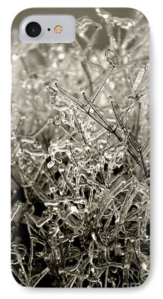 Encased In Ice IIi IPhone Case by Bonnie Myszka
