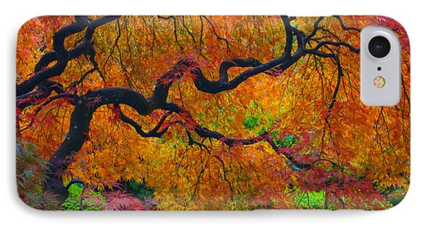 Enchanted Canopy Phone Case by Patricia Babbitt