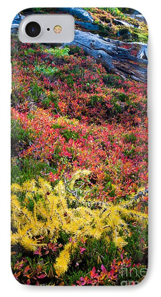Enchanted Colors Phone Case by Inge Johnsson