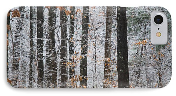 IPhone Case featuring the photograph Enchanted Forest by Linda Segerson