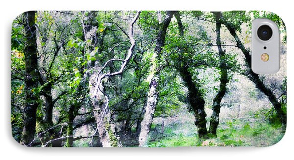 Enchanted Forest. The Kingdom Of Thetrees. Glendalough. Ireland Phone Case by Jenny Rainbow