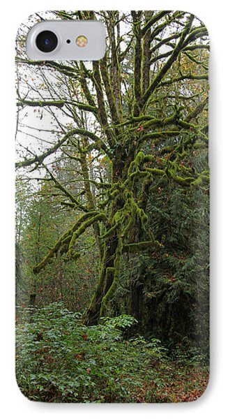 Enchanted Tree IPhone Case