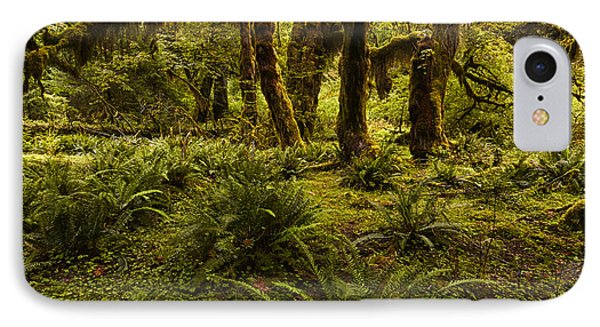 Enchantment IPhone Case by Mark Kiver