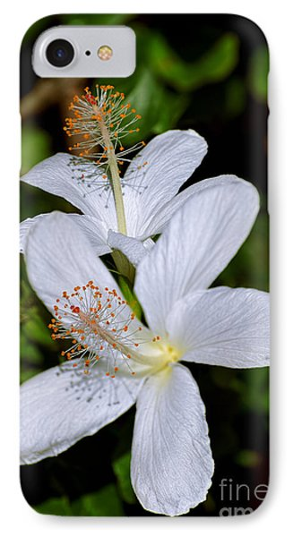 Endangered Koki'o White Hibiscus IPhone Case by Aloha Art