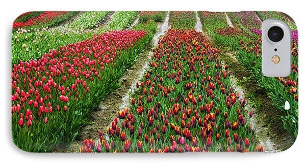 Endless Waves Of Tulips IPhone Case by Eti Reid