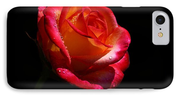 IPhone Case featuring the photograph Enflamed by Doug Norkum