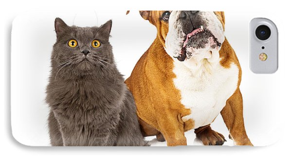 English Bulldog And Gray Cat IPhone Case