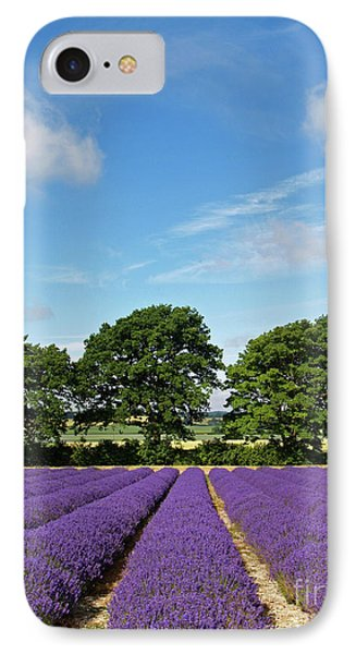 English Lavender Fields Near Selborne Hampshire Phone Case by Alex Cassels