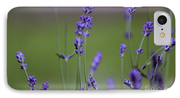 English Lavender IPhone Case