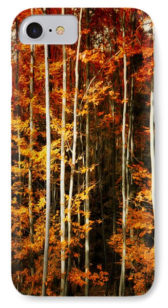 Equilibre IPhone Case by Philippe Sainte-Laudy