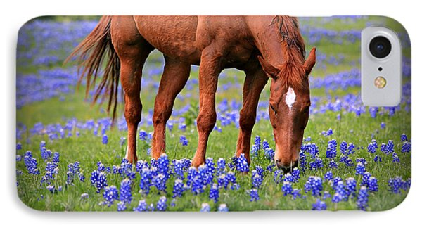 Equine Bluebonnets Phone Case by Stephen Stookey