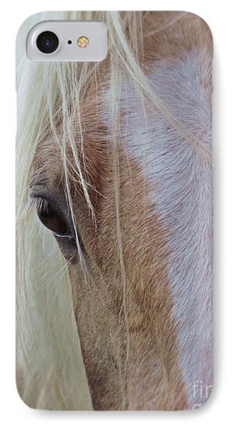 Equine Head Study IPhone Case by Laurinda Bowling