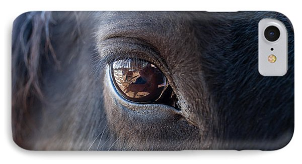Equine In Sight IPhone Case by Sheryl Cox