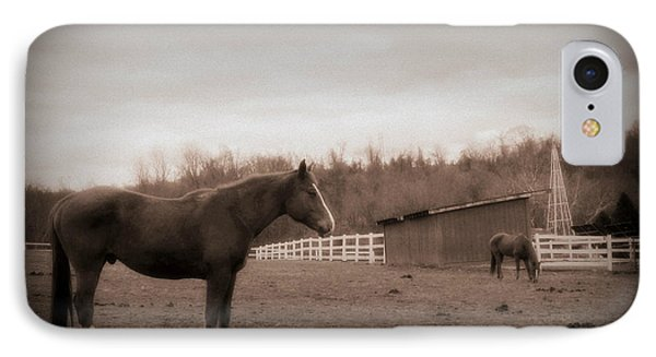 IPhone Case featuring the photograph Equine Reverie by Aurelio Zucco