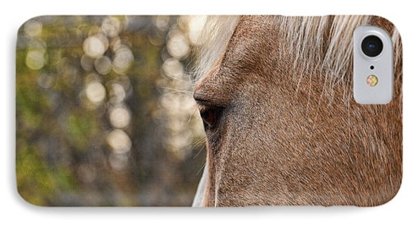 Equine Study 5 IPhone Case by Laurinda Bowling