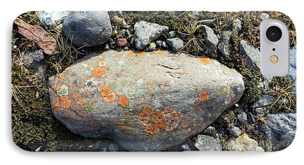 Erratic With Lichens IPhone Case by Dr Juerg Alean