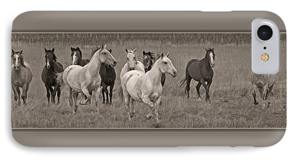 Escapees From A Lineup IPhone Case by Wes and Dotty Weber
