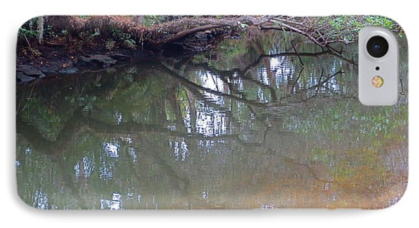 Estero River At  The Historic Koreshan Unity Settlement. Estero Florida. 1893. IPhone Case