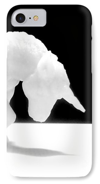 IPhone 7 Case featuring the photograph Eternelle Petite Licorne by Marc Philippe Joly