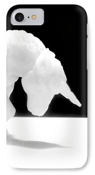 IPhone Case featuring the photograph Eternelle Petite Licorne by Marc Philippe Joly