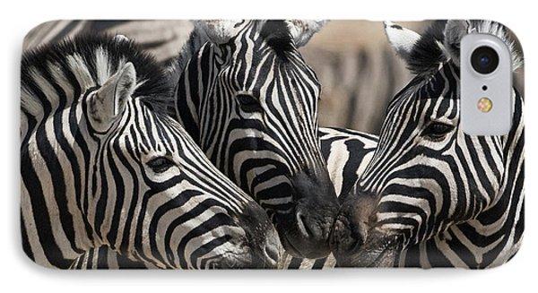 Etosha National Park IPhone Case by Janet Muir