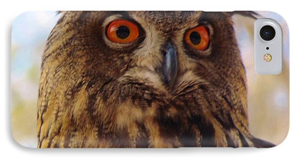 IPhone Case featuring the photograph Eurasian Eagle Owl by Cynthia Guinn