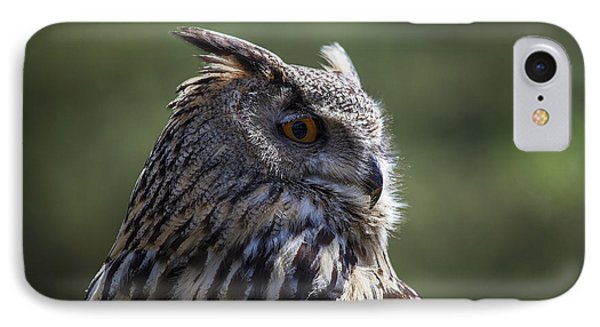 Eurasian Eagle-owl Phone Case by Garry Gay