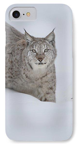 Eurasian Lynx Phone Case by Andy Astbury
