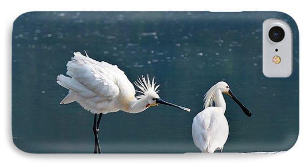Eurasian Spoonbill Courtship Display IPhone Case by K Jayaram