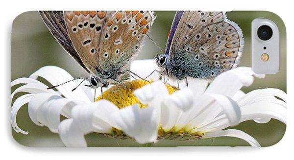 European Common Blue Butterflies IPhone Case