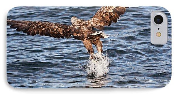 European Fishing Sea Eagle 2 IPhone Case by Heiko Koehrer-Wagner