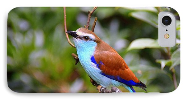 European Roller IPhone Case