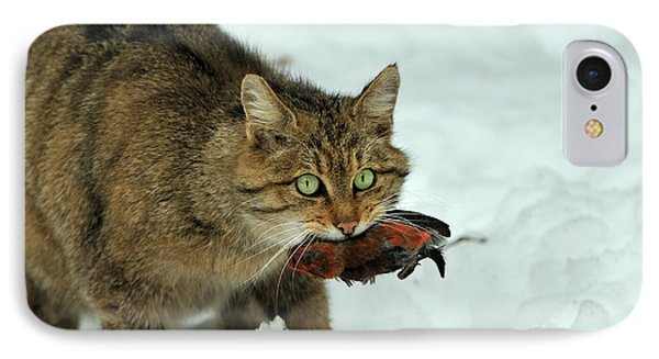 Crossbill iPhone 7 Case - European Wildcat by Reiner Bernhardt
